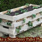How to Make a Strawberry Pallet Planter (video)
