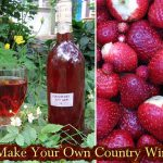 DIY Homesteading: Making Your Own Country Wines