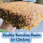 Healthy Boredom Buster for Chickens