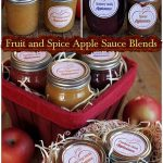 Home Made Fruit and Spice Apple Sauce Blends
