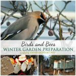 Winter Garden Prep: Birds & Bees