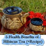 5 Health Benefits of Hibiscus Tea (+Recipe)