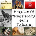 Huge List of Homesteading Skills to Learn