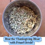 Beat the Thanksgiving Bloat with Fennel Seeds!