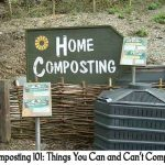 Composting 101: Things You Can and Can't Compost