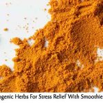 Adaptogenic Herbs For Stress Relief With Smoothie Recipe