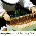 Beekeeping 101: Getting Started