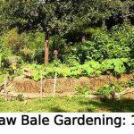 Straw Bale Gardening: 101