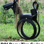DIY Pony Tire Swing