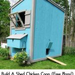 Build A Shed Chicken Coop (Free Plans!)