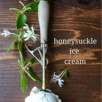 Honeysuckle Ice Cream