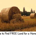 Where to Find FREE Land for a Homestead