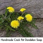 Handmade Crock Pot Dandelion Soap