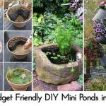 15 Budget Friendly DIY Mini Ponds in a Pot
