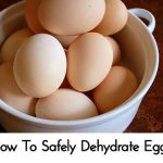 How To Safely Dehydrate Eggs