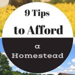 9 Tips To Afford A Homestead
