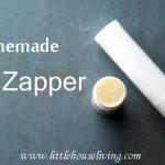 Homemade Zit Zapper