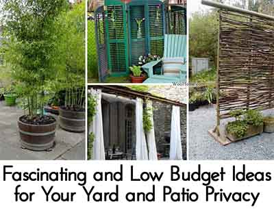 fascinating and low budget ideas for your yard and patio