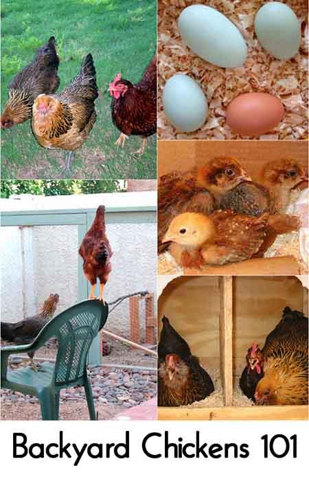 Image credit: apieceofrainbow.com