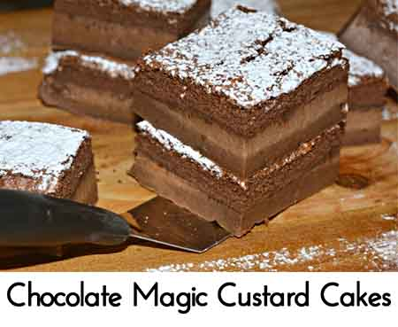 chocolate magic cake chocolate magic custard cakes lil moo creations 2883