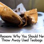 10 Reasons Why You Should Never Throw Away Used Teabags