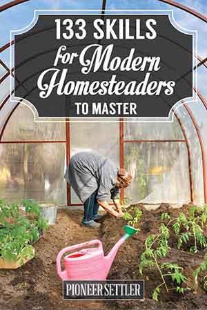 Image credit: pioneersettler.com