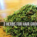 3 Herbs For Hair Growth