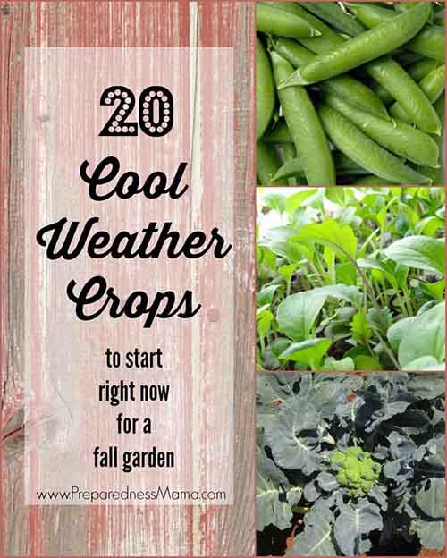 Image: preparednessmama.com