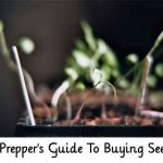 A Prepper's Guide To Buying Seeds