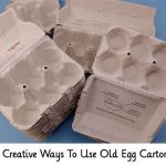 11 Creative Ways To Use Old Egg Cartons
