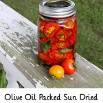 Olive Oil Packed Sun Dried Tomatoes with Basil – Recipe