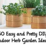 50 Easy and Pretty DIY Indoor Herb Garden Ideas