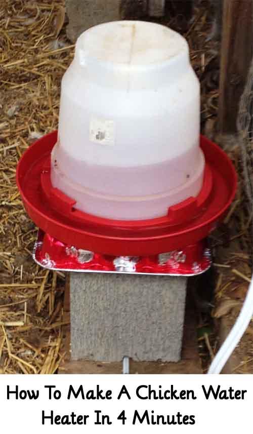 Image: citygirlfarmingblog.com
