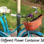 30 Different Flower Container Ideas