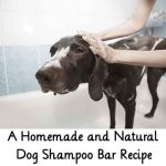 A Homemade and Natural Dog Shampoo Bar Recipe