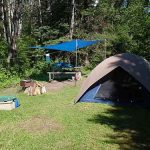 Camping near you. Find a Free Campsite