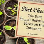 Dirt Cheap: The Best Frugal Gardening Ideas on the Internet