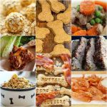 18 Best Homemade Dog Food And Treat Recipes