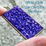 Grow Your Own Crystal Necklace