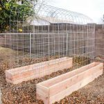 HOW TO MAKE A TRELLIS & RAISED GARDEN BOX COMBO