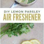 Parsley Lemon DIY Air Freshener